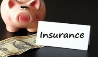 piggy bank with money and word insurance